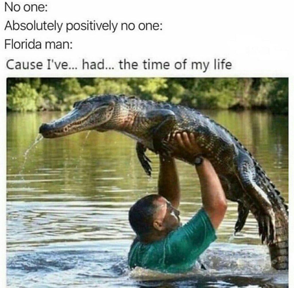 gators yo