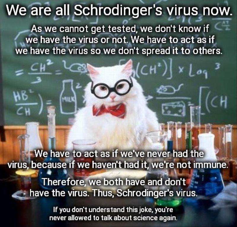 Shrodingers Virus